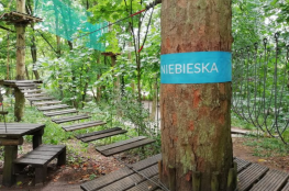 Toruń Atrakcja park linowy Barbarka